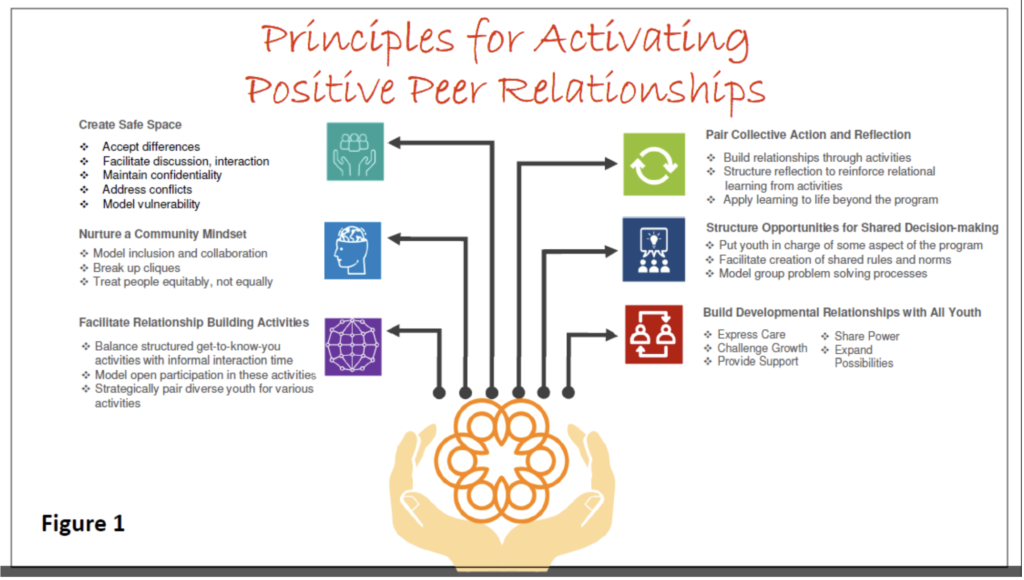 peer relationships 1